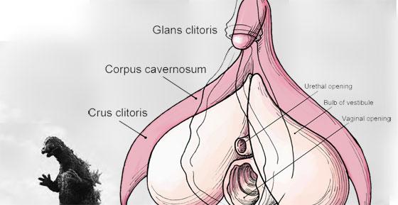 Candy Quotient worlds longest clitoris pictures