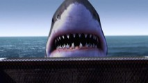 2012_1_30_jaws15
